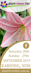 Plant Lovers Fair